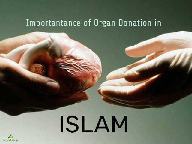 Organ Donation in Islam