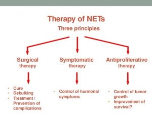 Therapy of NETs