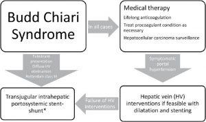 Budd-Chiari syndrome