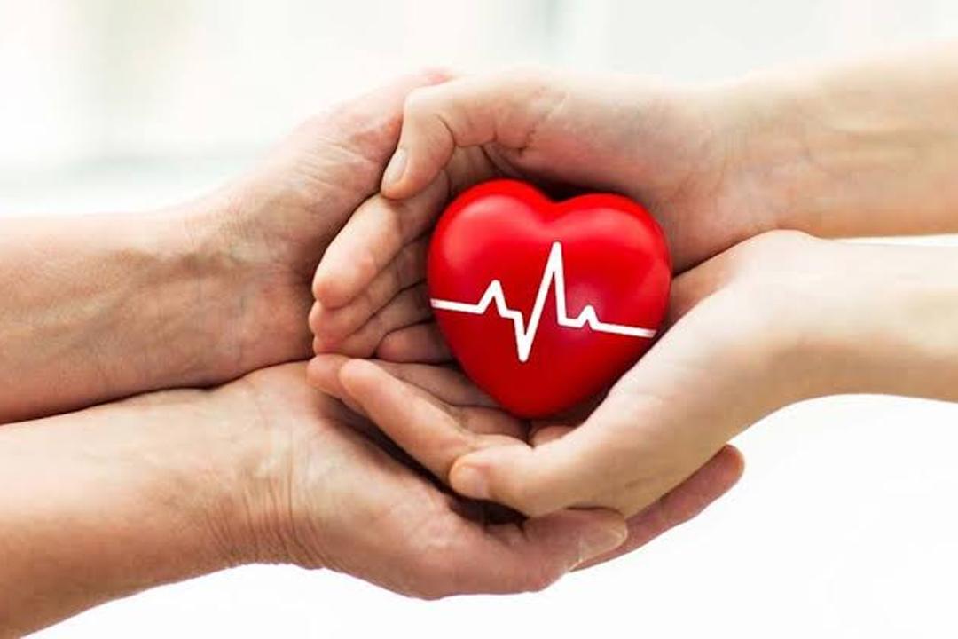 organ donation awarnance month